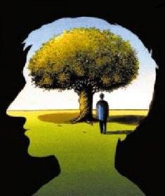cerebro-ecologia
