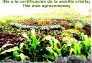 Patrimonio arqueológico y humedales de importancia mundial amenazados por el monocultivo de piña en Costa Rica